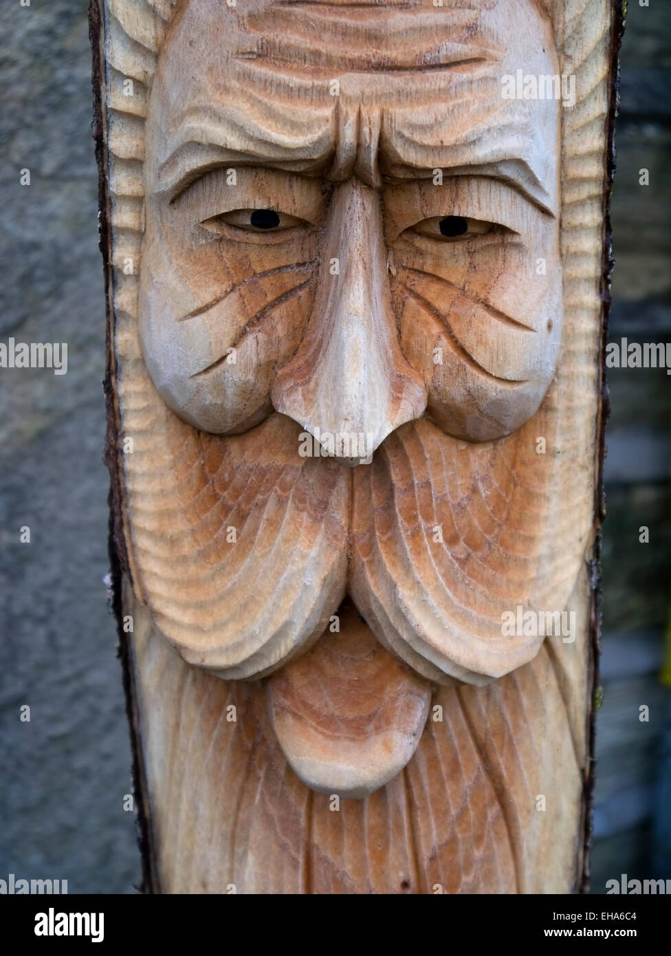 Carvings of wood spirit faces - Stock Image