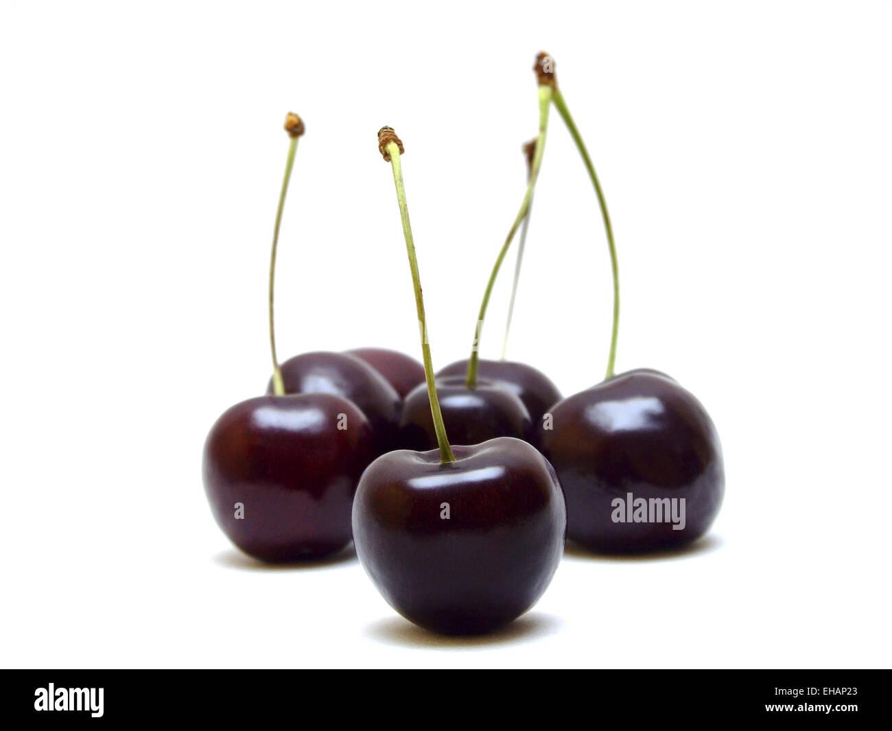 Kirschen / cherries - Stock Image