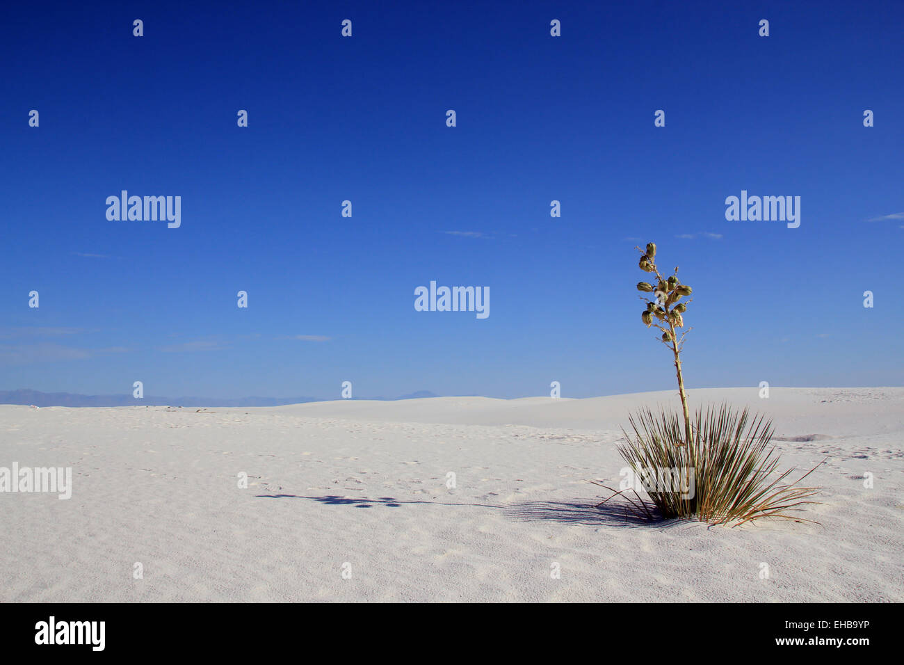 White Sands - Stock Image