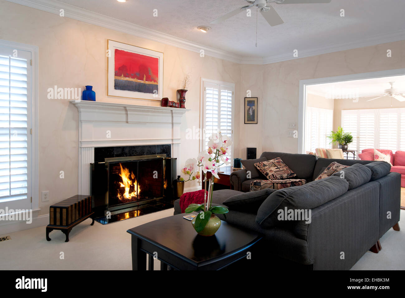 Modern residential interior furnished living room in a single family house - Stock Image