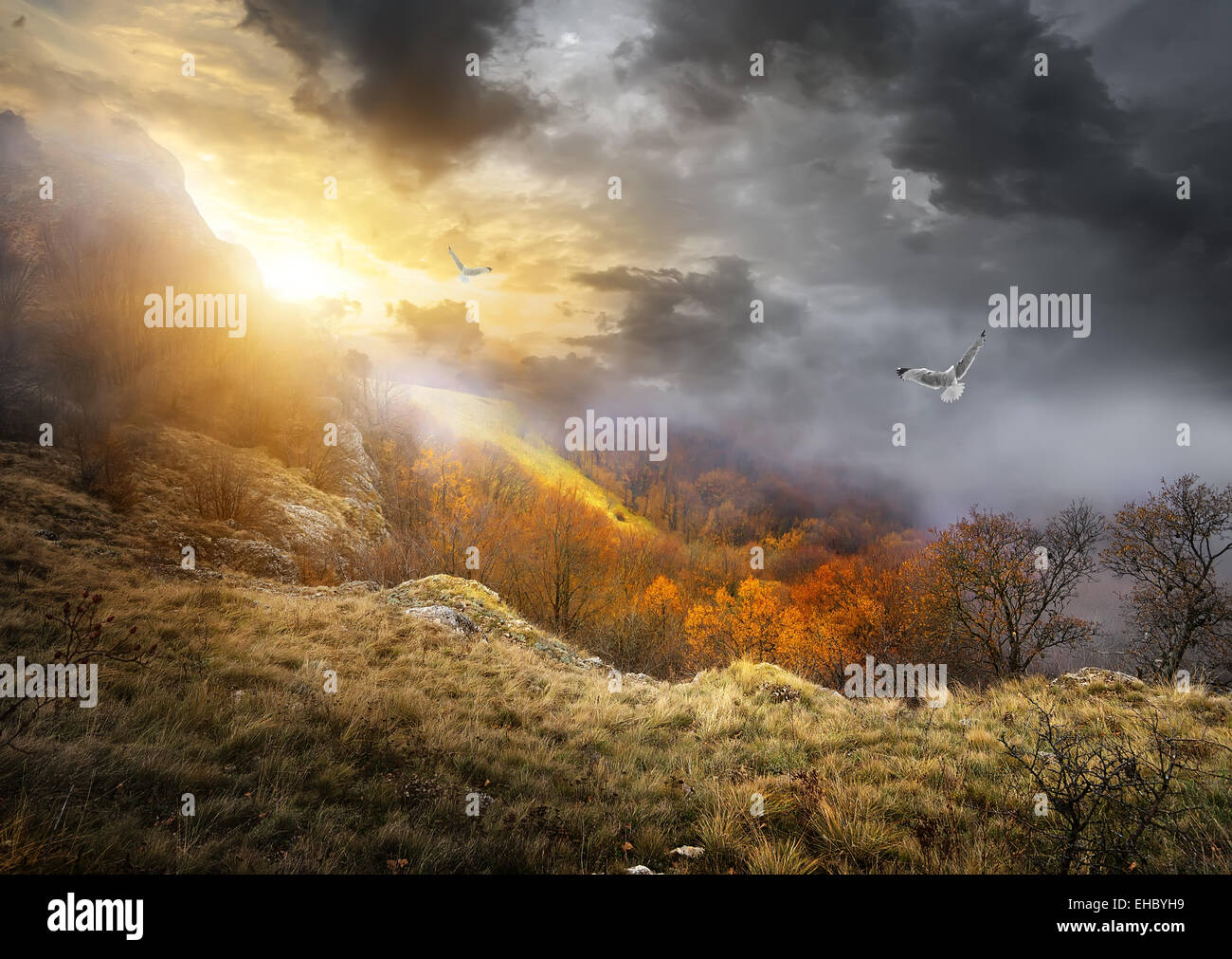 Birds and gray clouds over mountains in autumn - Stock Image