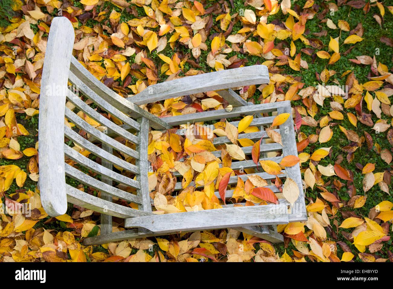 hölzerner Liegestuhl mit Blätter im Herbst - Stock Image