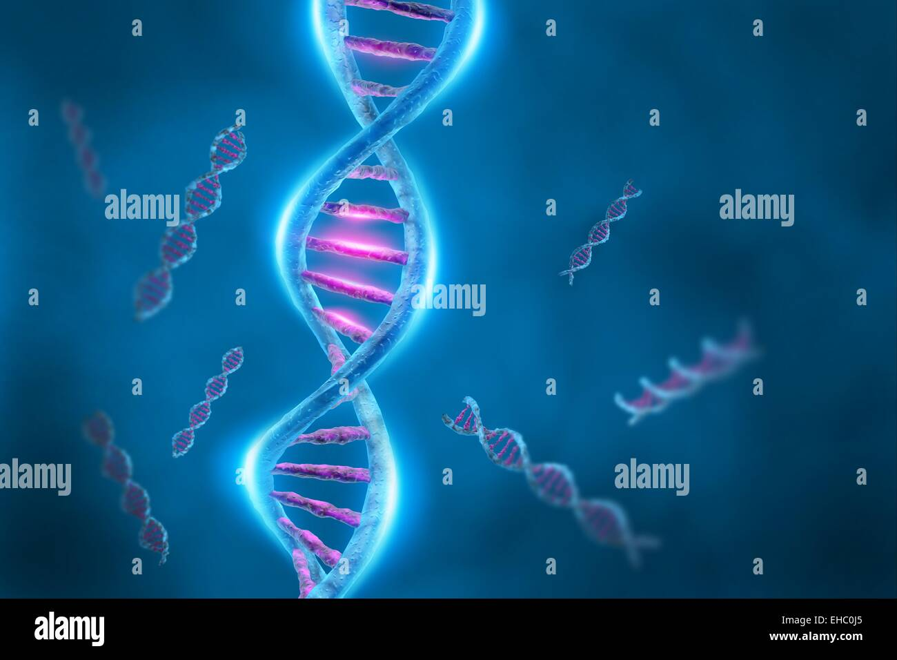 A 3D illustration representing the human DNA genetic material with double helix molecular strands. - Stock Image