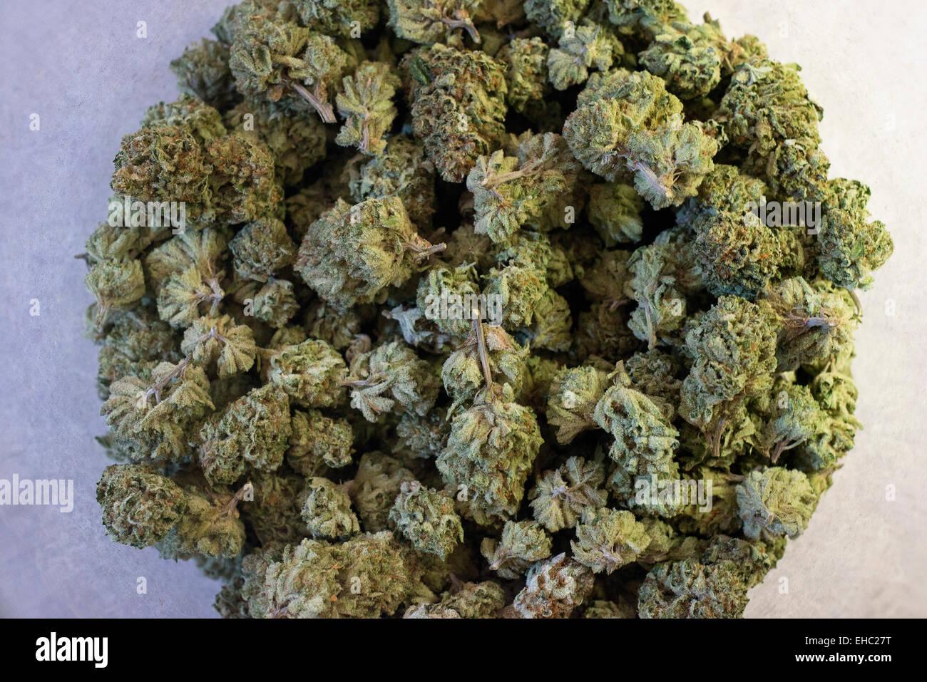 Medical Marijuana Stock Photos Medical Marijuana Stock Images Alamy