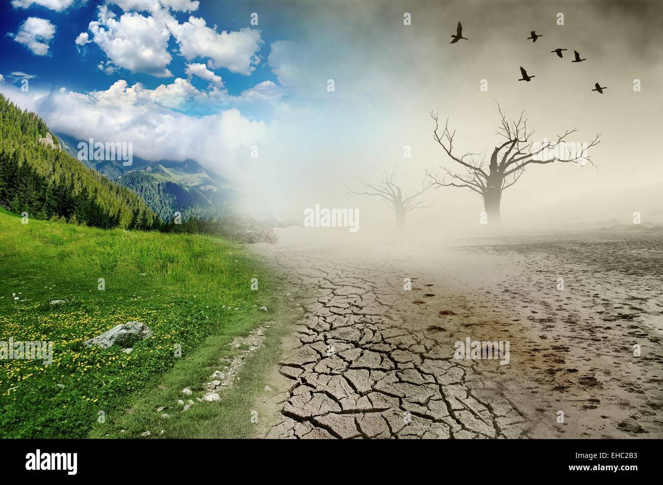 Nature environmental disaster inflicted by human kind - Stock Image