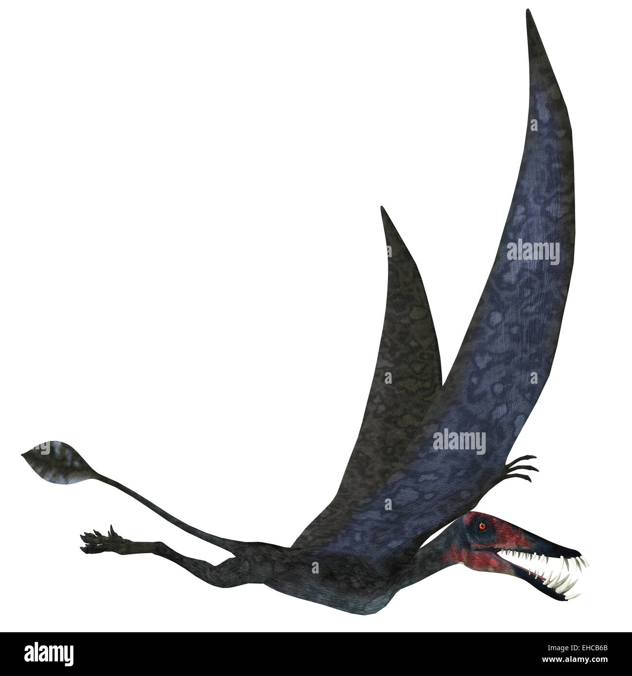 Dorygnathus was a carnivorous Pterosaur that lived in the Jurassic Era of Europe. - Stock Image