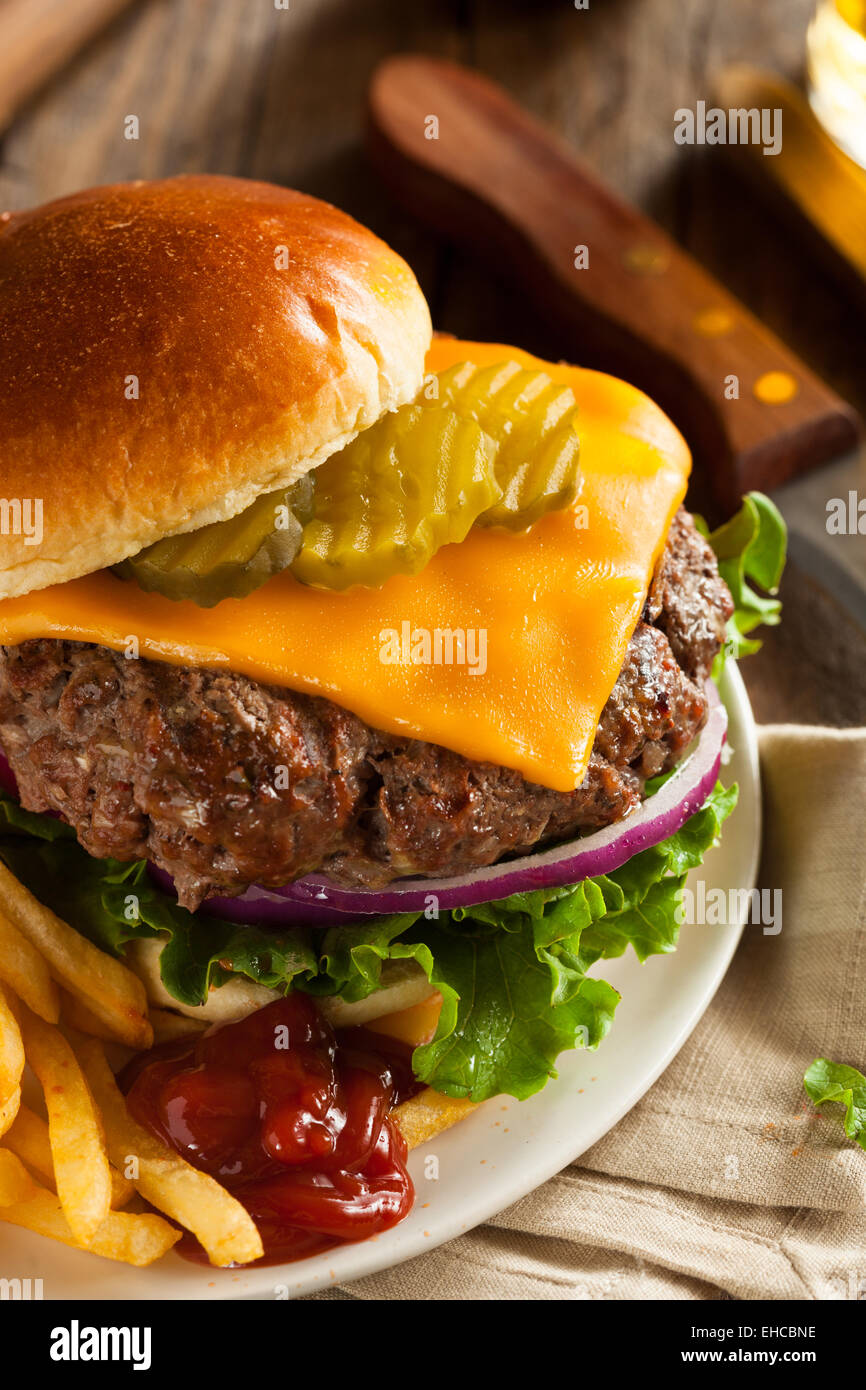 Grass Fed Bison Hamburger with Lettuce and Cheese - Stock Image
