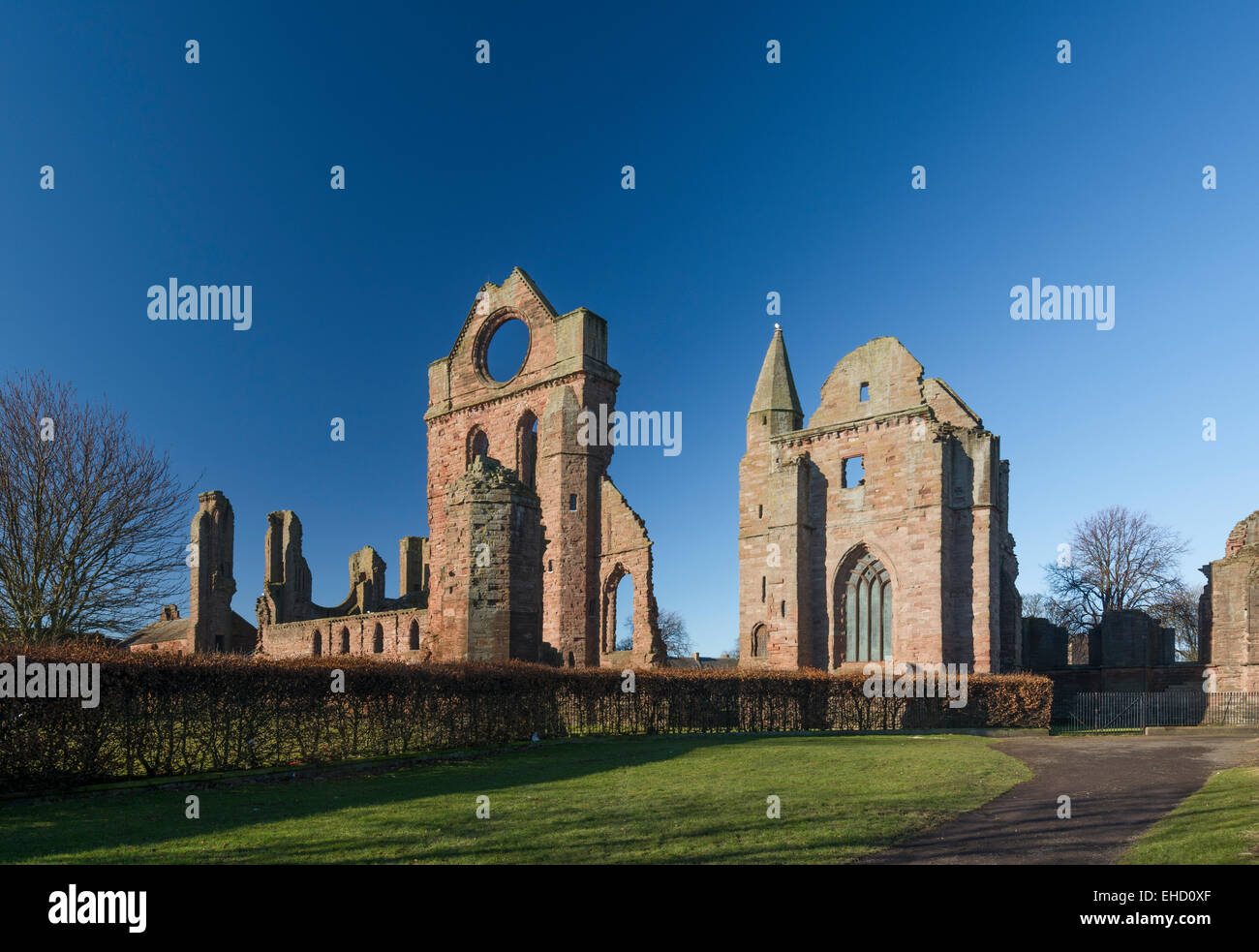 arbroath abbey in cold clear crisp bright light - Stock Image