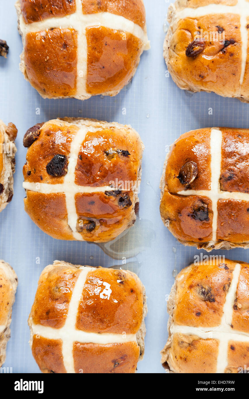 Hot cross buns,coated in sweet honey in rows on baking sheet paper - Stock Image