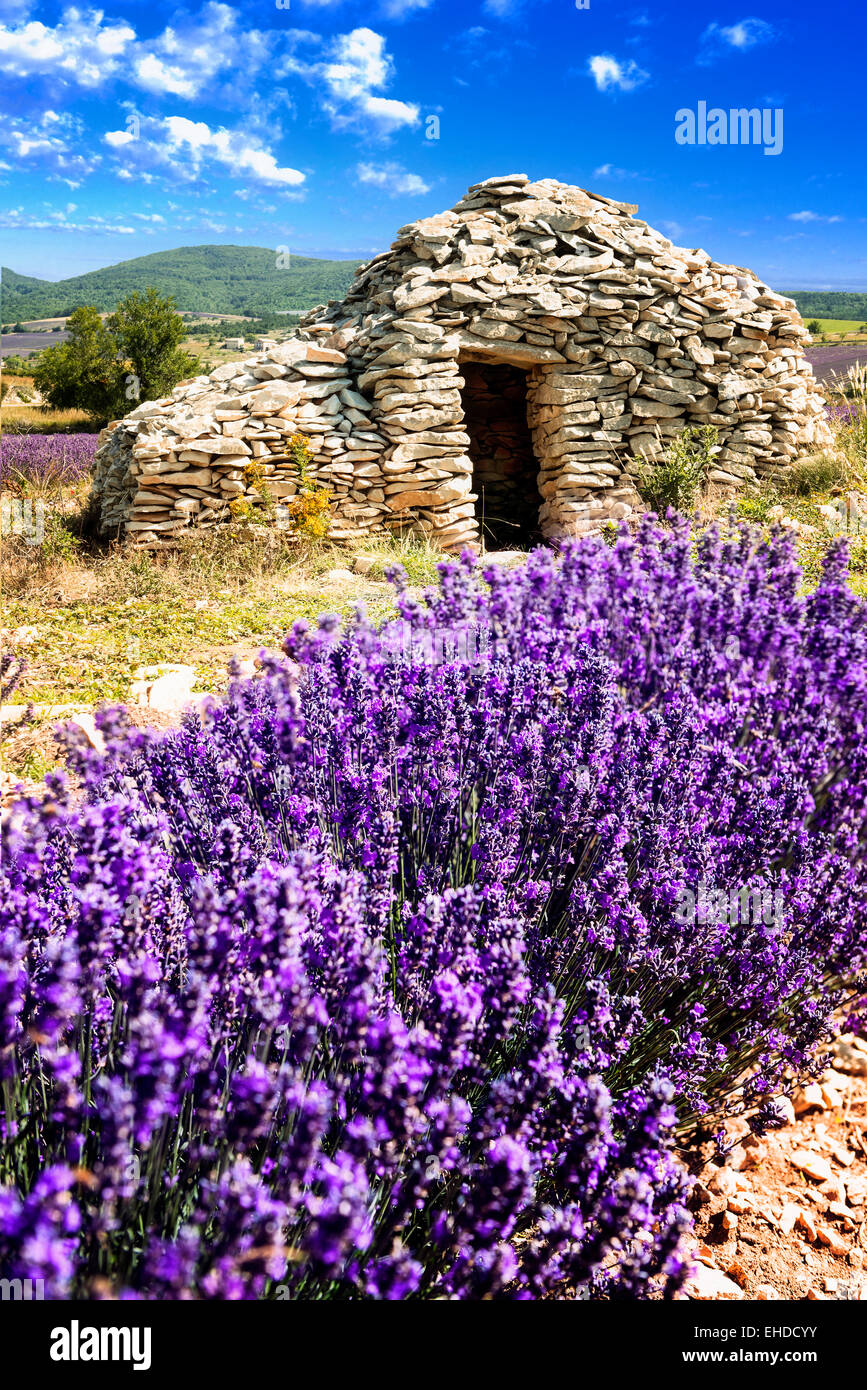 Small caban lavender Summer sunset in Provence, France. - Stock Image