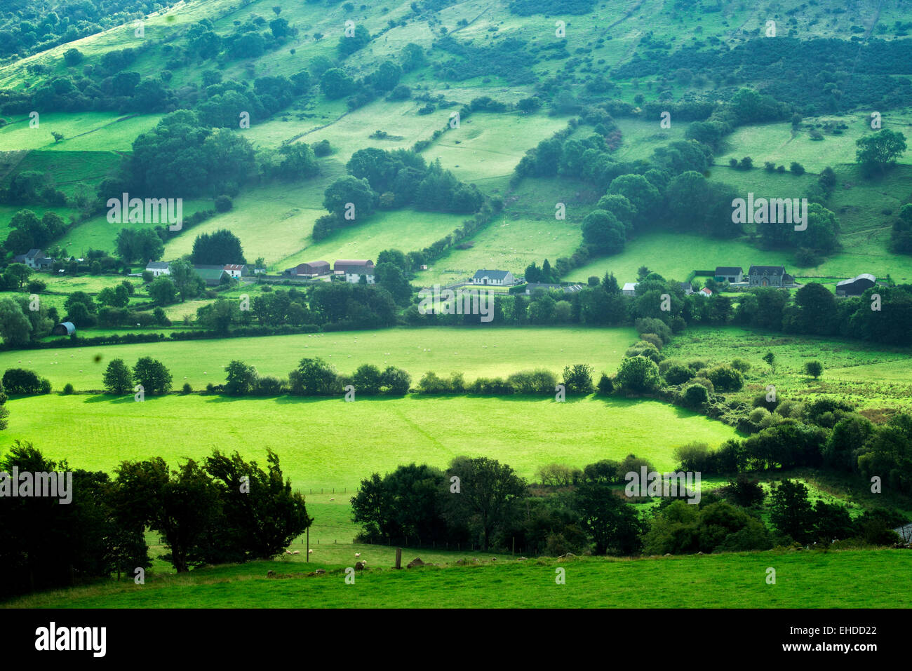 Glenariff Valley from Glenariff Forest Park, Northern Ireland - Stock Image