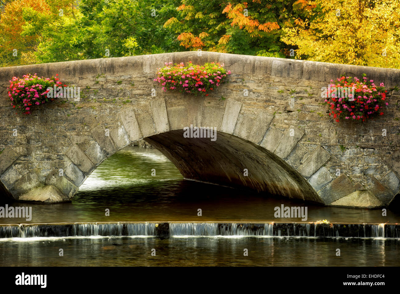 Hanging flower baskets on bridge with fall colored trees in Westport, Ireland - Stock Image