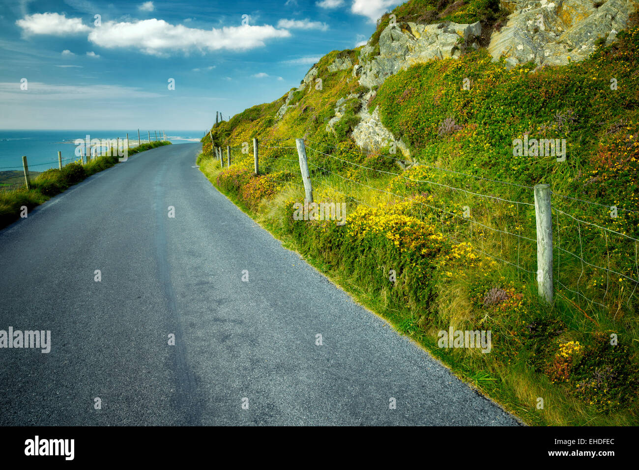Road and fence with wildflowers. Sky Loop Road. Clifden, Ireland Stock Photo