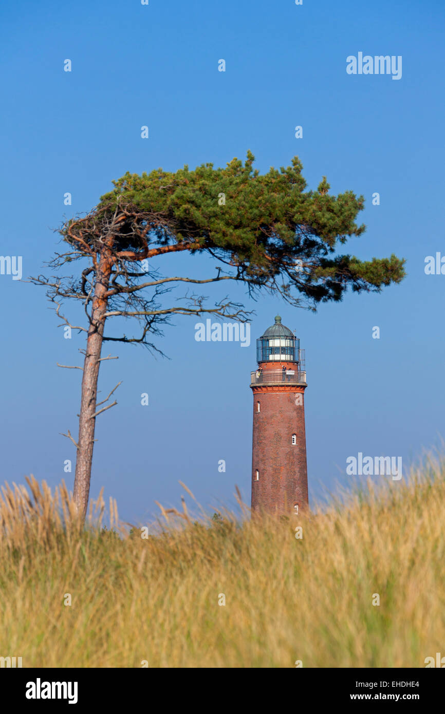 Lighthouse Darßer Ort / Darsser Ort, Western Pomerania Lagoon Area National Park, Mecklenburg-Western Pomerania, - Stock Image