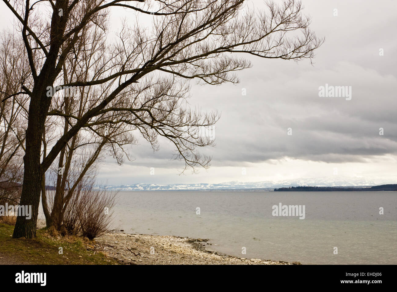 Bodensee, Deutschland, Lake Constance, Germany - Stock Image