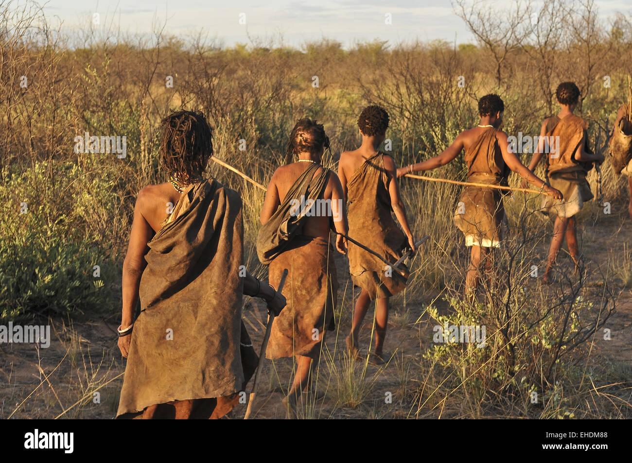 the bushmen of the kalahari desert Cultural visit to the ju'/hoasi bushmen of the kalahari, botswana  your  encounter with the bushmen of the kalahari will include learning the bushman's   spending two or three nights in the quiet of the kalahari desert is an ideal way  of.