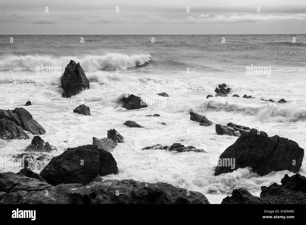 Coast around the base of Mauoa mountain in Tauranga, New Zealand. Black and white seascape - Stock Image