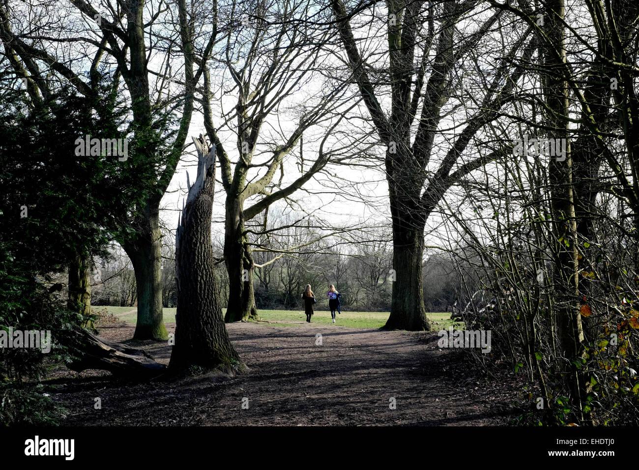 A rear view of two women walking in Hampstead Heath - Stock Image