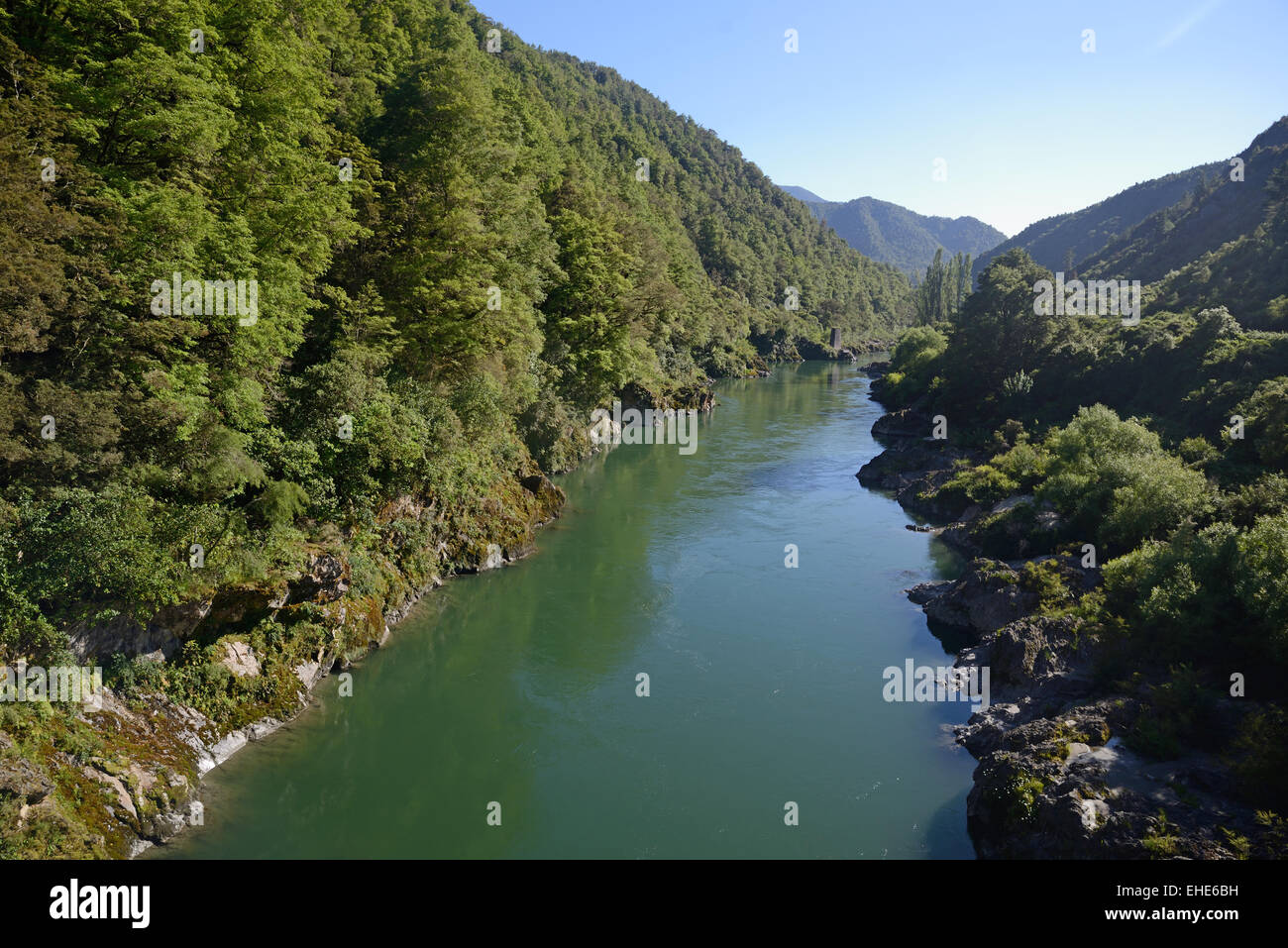 The Buller River flows through native beech forest in Westland, New Zealand. Stock Photo