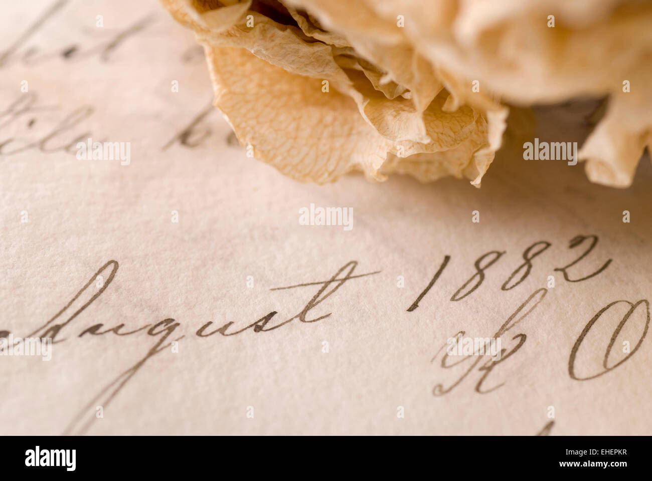 Old document from 1882 with a dried rose. - Stock Image