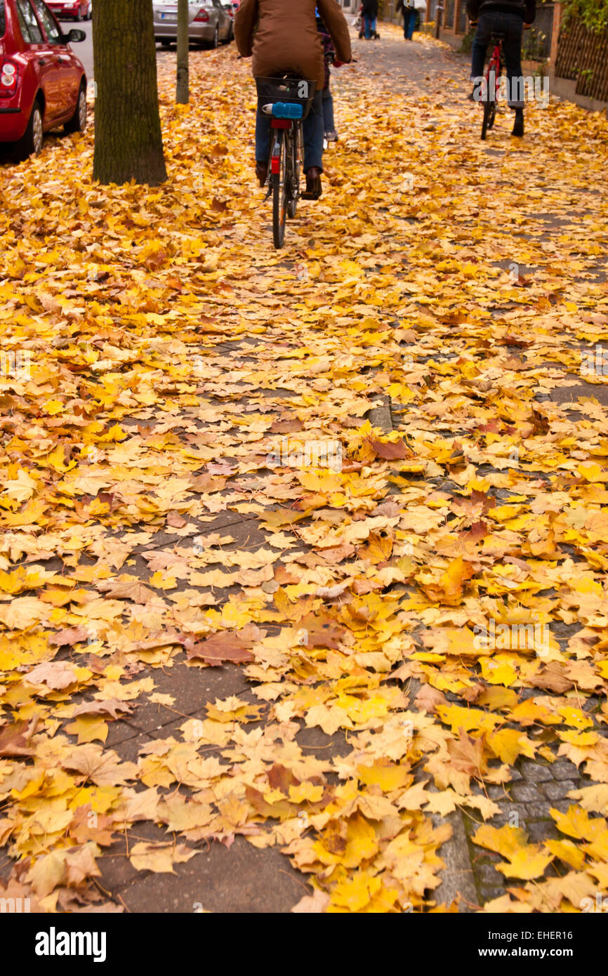 bicyclist in autumn - Stock Image