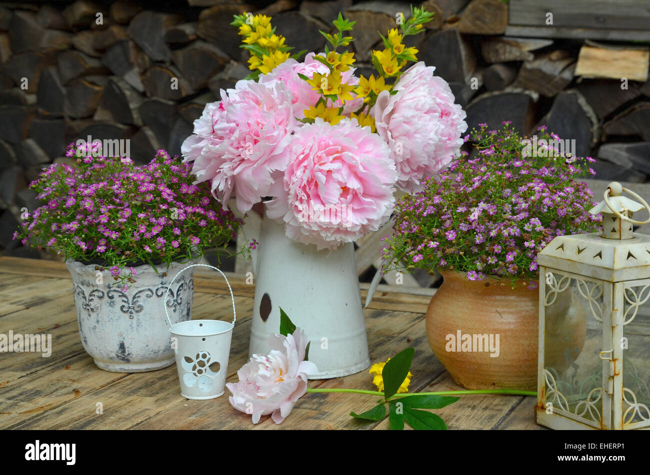 garden peonies shabby chic flowers stock photo 79616601 alamy. Black Bedroom Furniture Sets. Home Design Ideas