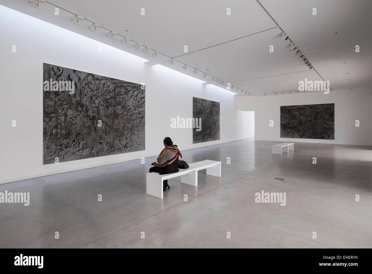 art installations by Julie Mehretu at 2015 Sharjah Biennial art festival in Sharjah United Arab Emirates - Stock Image