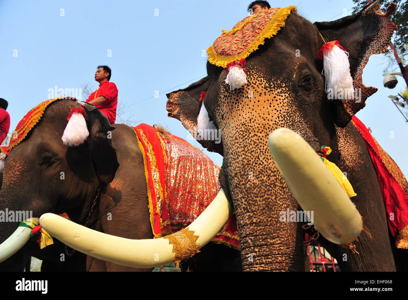 March 13: the day of the elephant in Thailand, the day of Pluto in the USA (Illinois). Holidays March 13 13