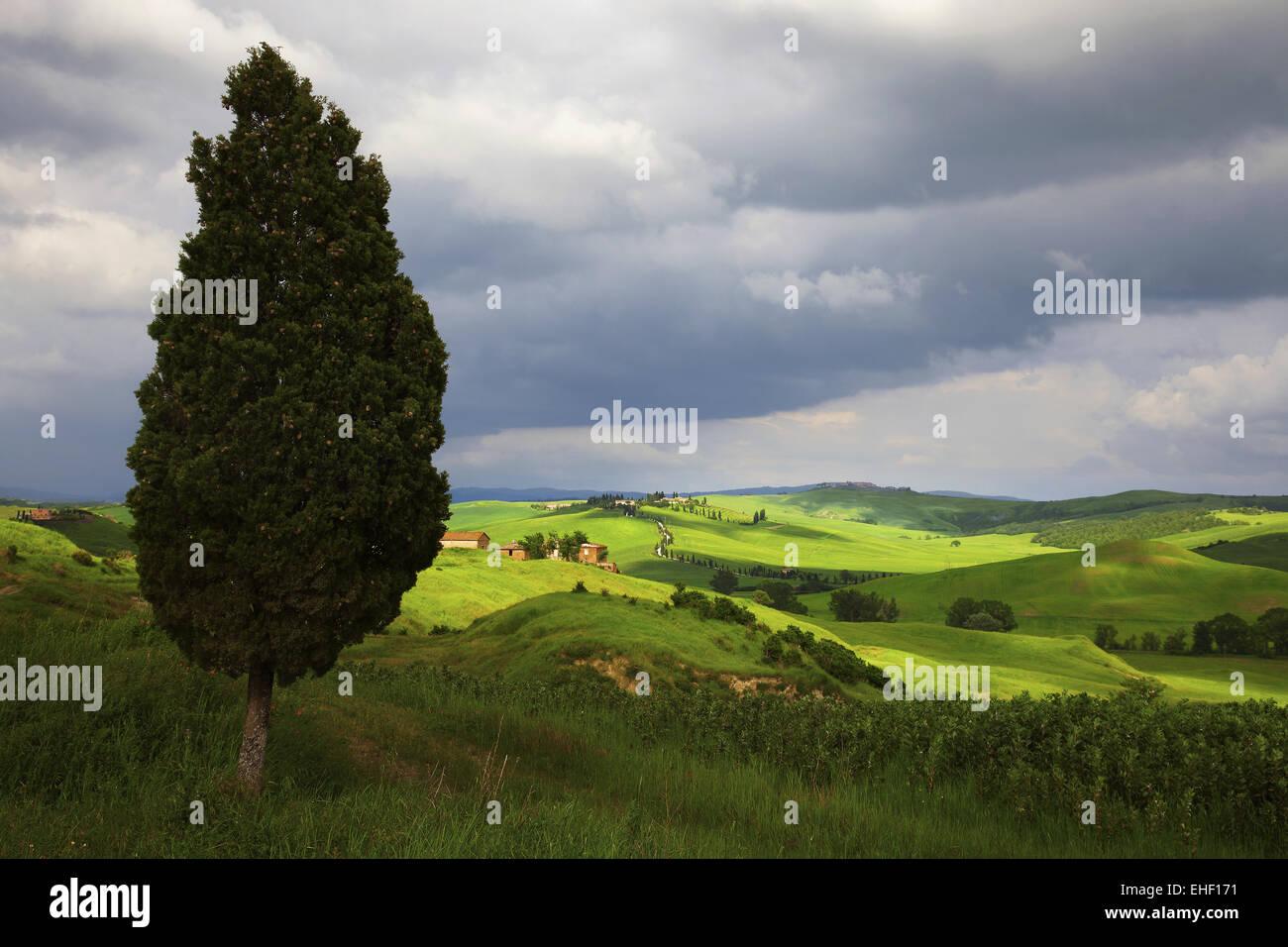 Crete Senesi, Val d'Arbia, Tuscany, Italy - Stock Image