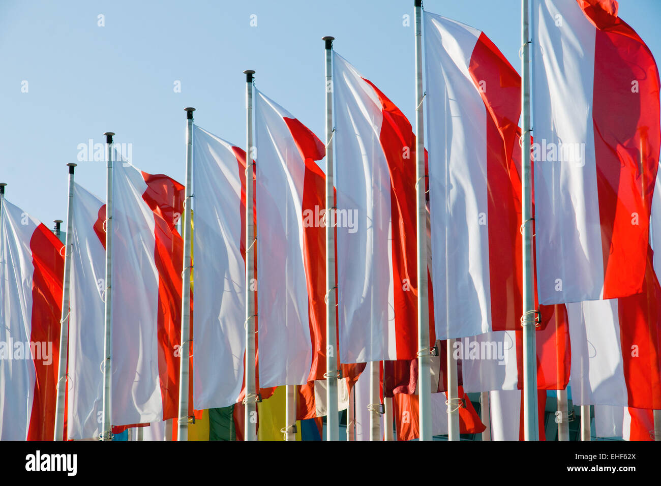 Red and white polish flags Stock Photo