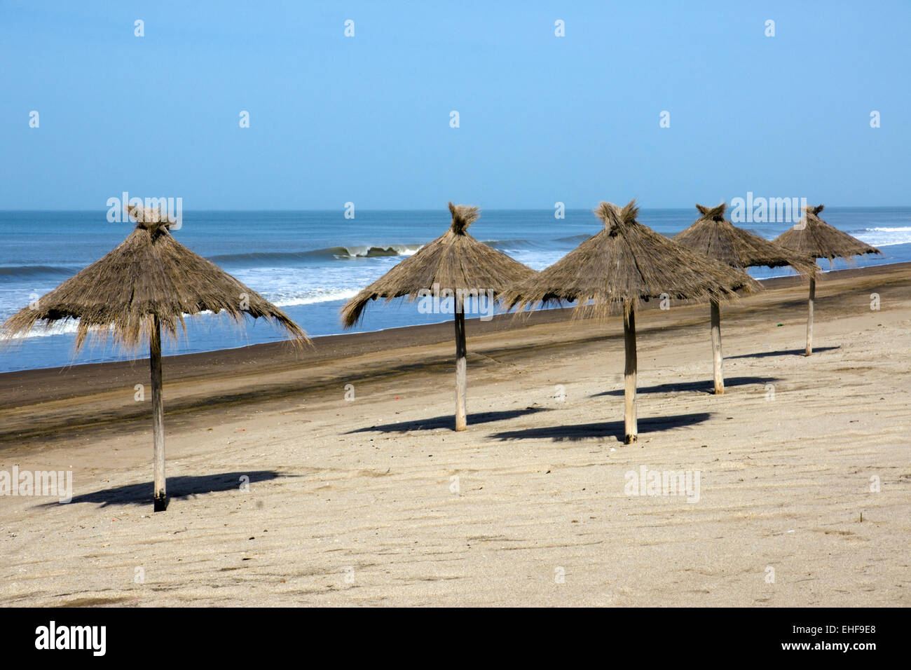 Sunshades at an empty beach - Stock Image