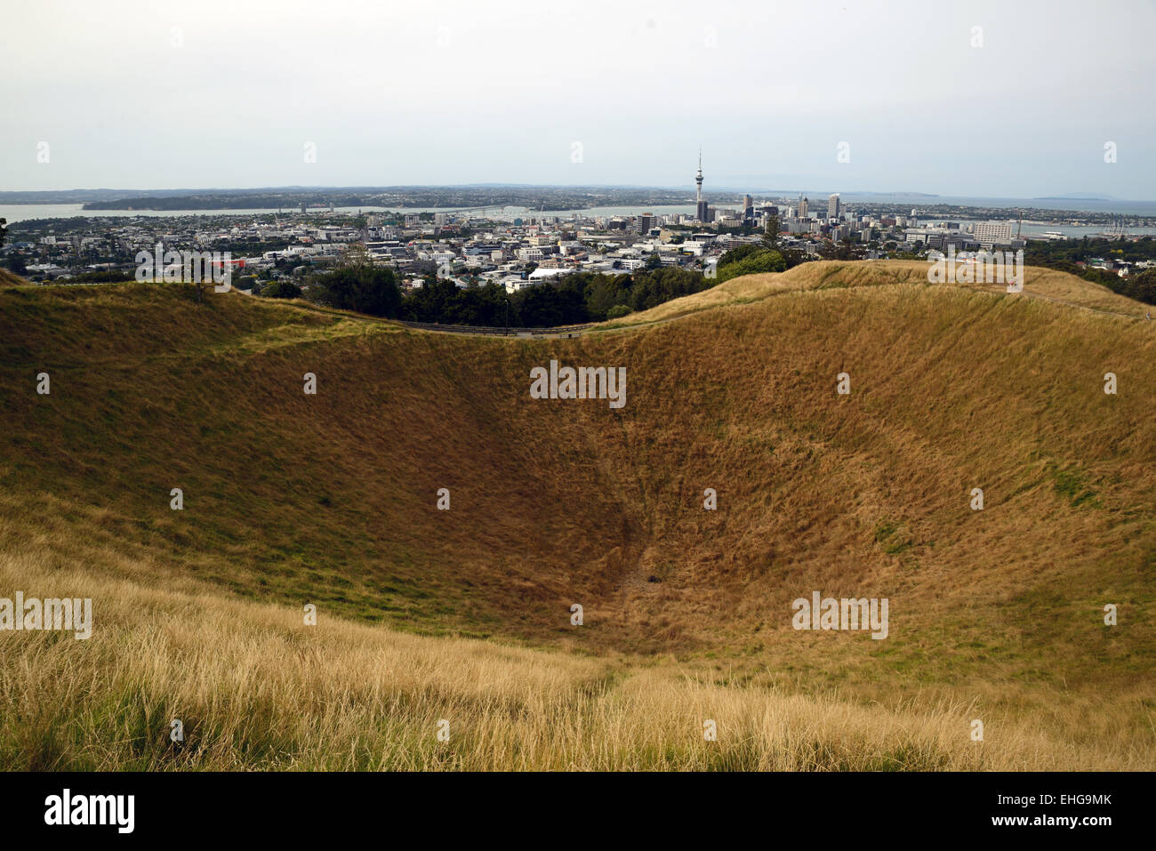 The crater of the Mount Eden volcano with Auckland city skyline, Northland, New Zealand - Stock Image
