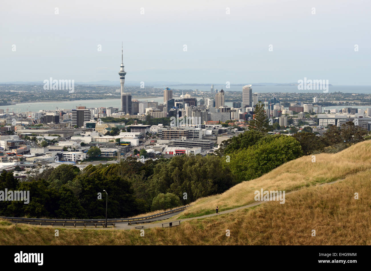 Auckland central Business District from the Mount Eden lookout, Auckland, New Zealand - Stock Image