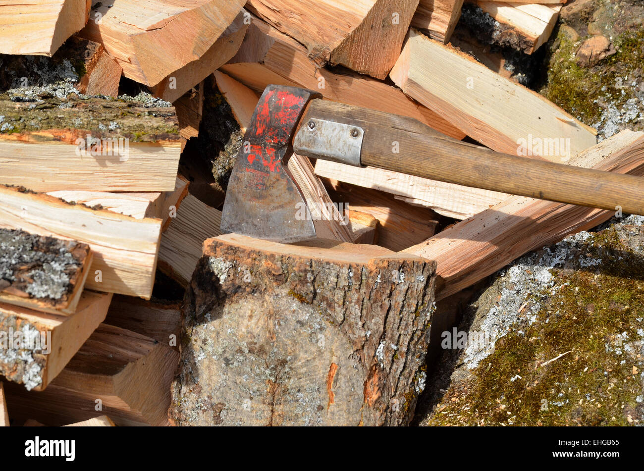 Hardwood wood fire ax - Stock Image