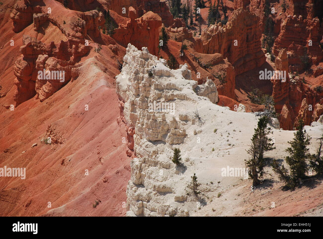 Cedar Breaks - Stock Image