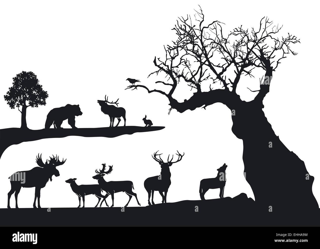 gnarled tree with wildlife isolated on white - Stock Image