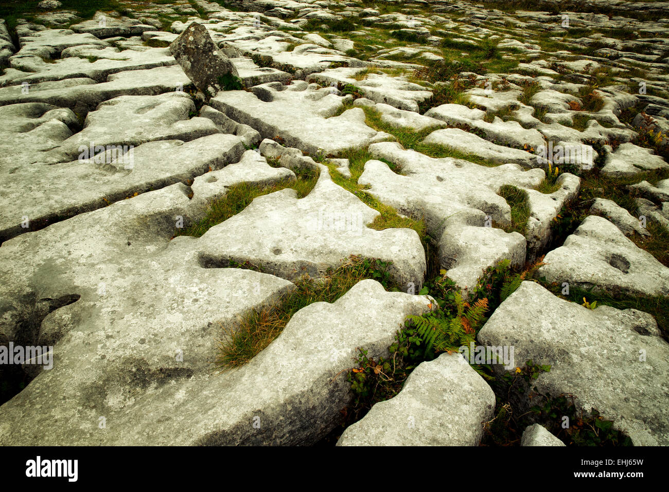Karst rock formation near the Megalithic tomb called Poulnabrone. The Burren, Ireland - Stock Image