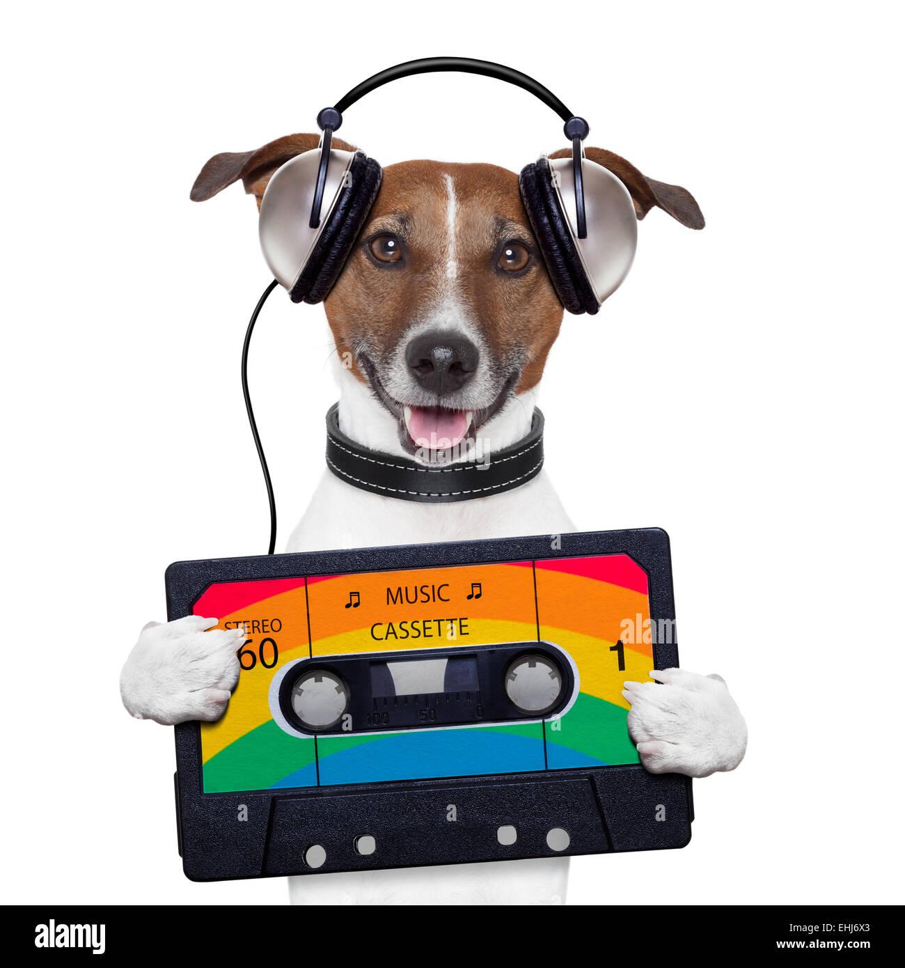 music cassette tape headphone dog - Stock Image