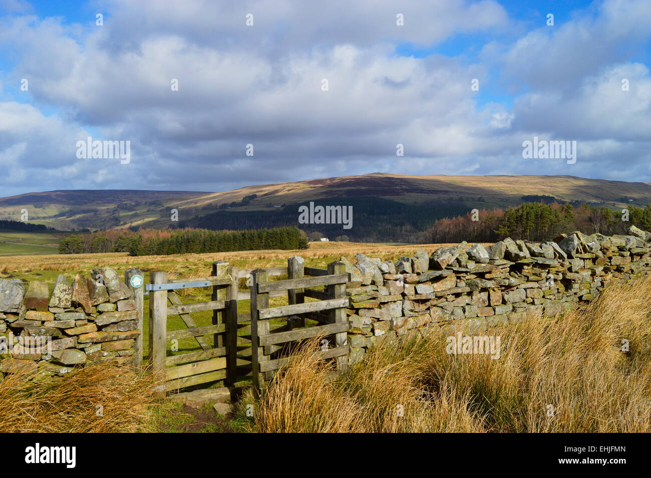 Stile in dry stone wall on Pennine Way near Alston in Tynedale. - Stock Image