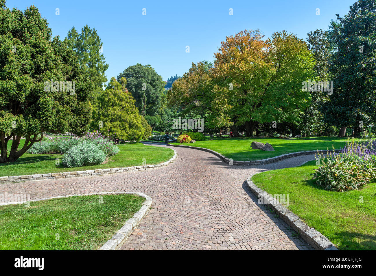Paved walkway among green lawns and lush trees of Valentino Park in Turin, Italy. - Stock Image