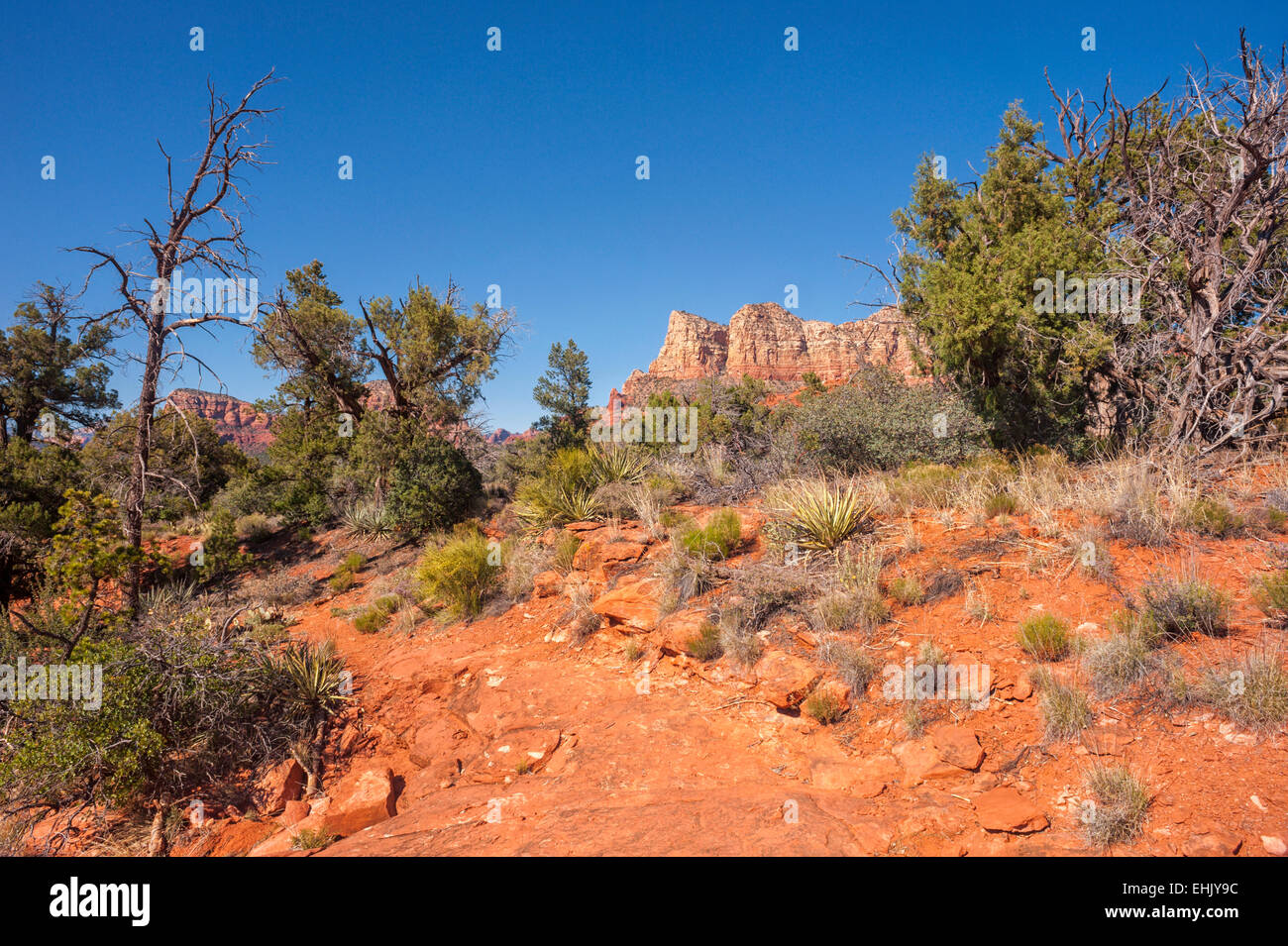 Sweeping view of Courthouse Butte and other red rock buttes, and southwestern desert landscape, Sedona, Arizona, - Stock Image