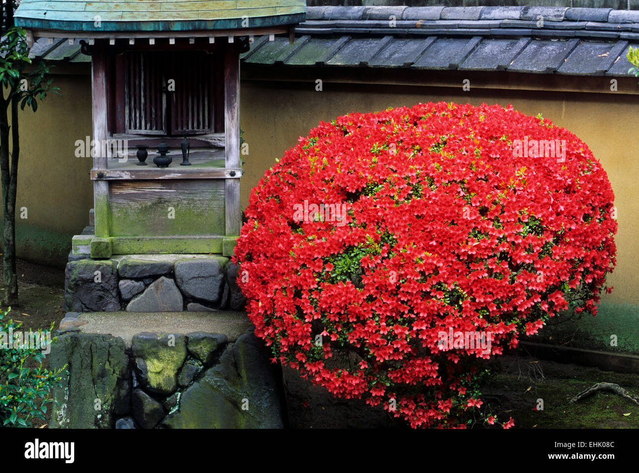 The City of Kyoto is a unique reserve for ancient Zen gardens and shrines that are over nine hundred years old - Stock Image
