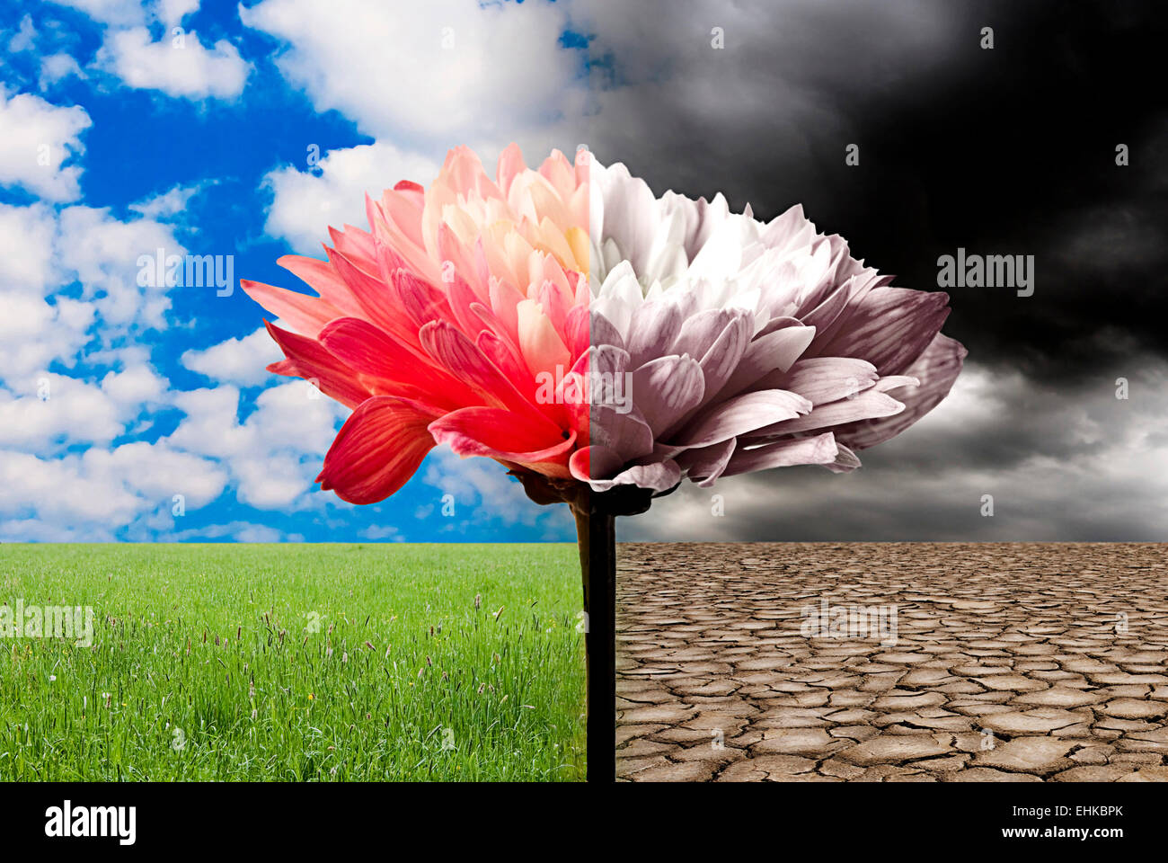 conceptual image for global warming danger and ecology and environment awareness - Stock Image