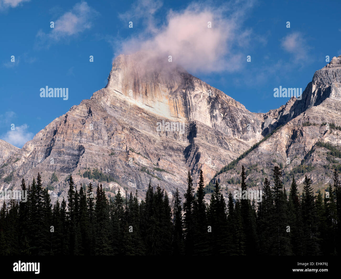 Silhouetted trees, mountain and  clouds. Banff National Park. Alberta, Canada - Stock Image