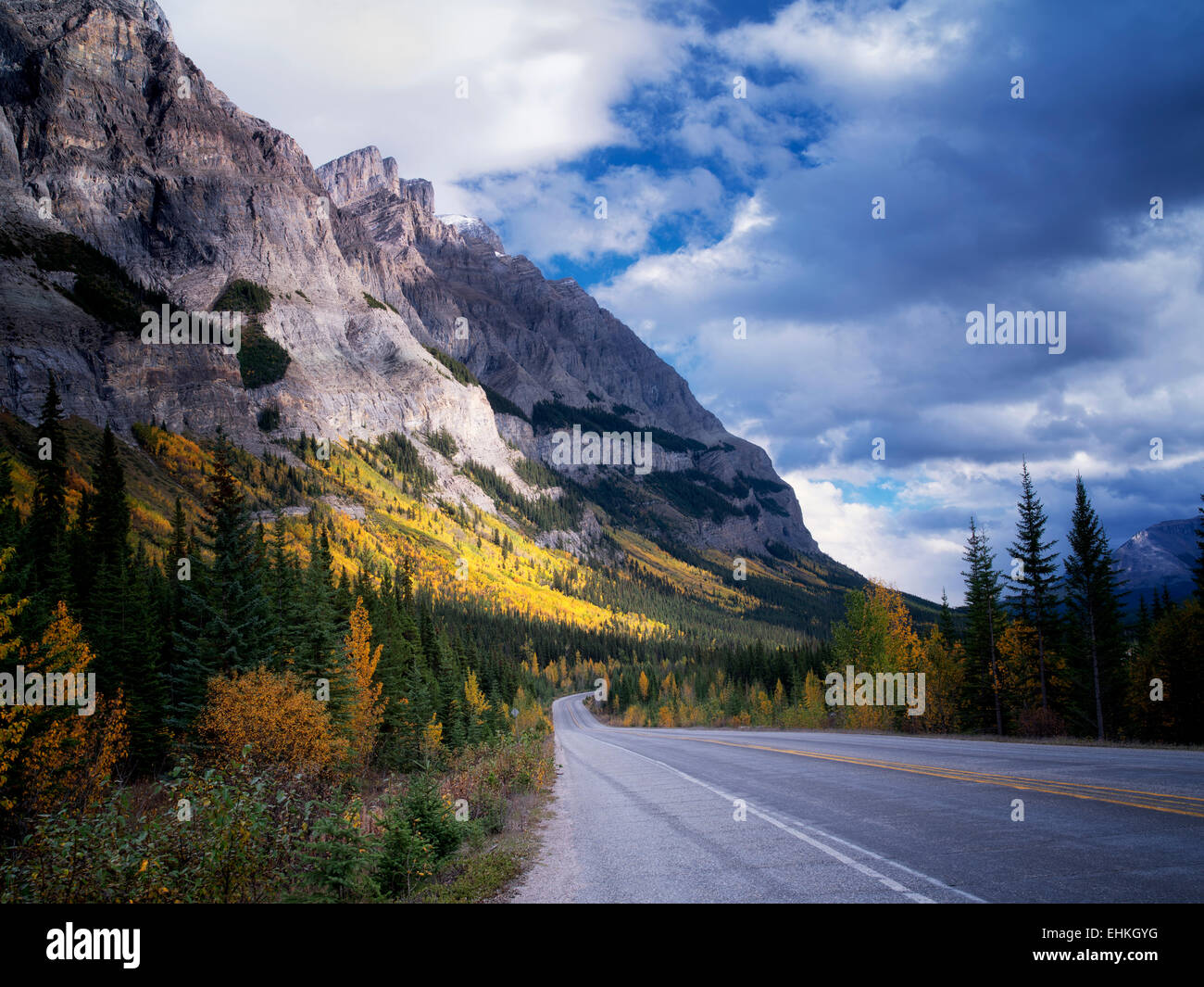 Mountainside with fall colored aspen trees and road. Banff National Park, Alberta, Canada - Stock Image