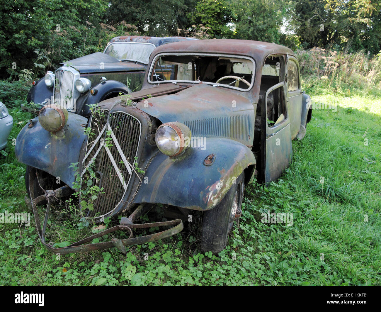 Derelict Cars in a Field - Stock Image