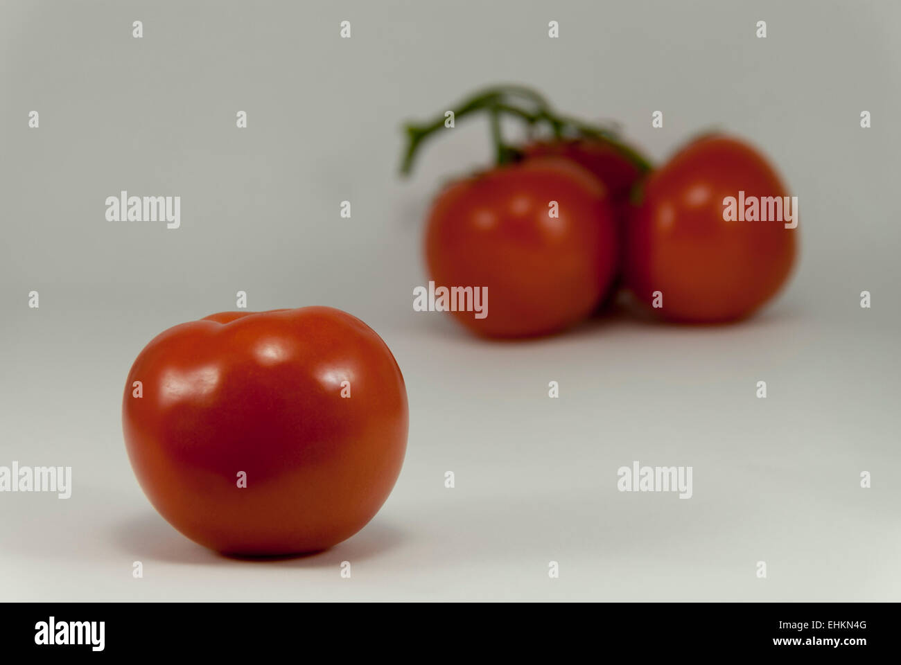 Single ripe plump red tomato backed by blurred grouping of three tomatoes with white background. - Stock Image