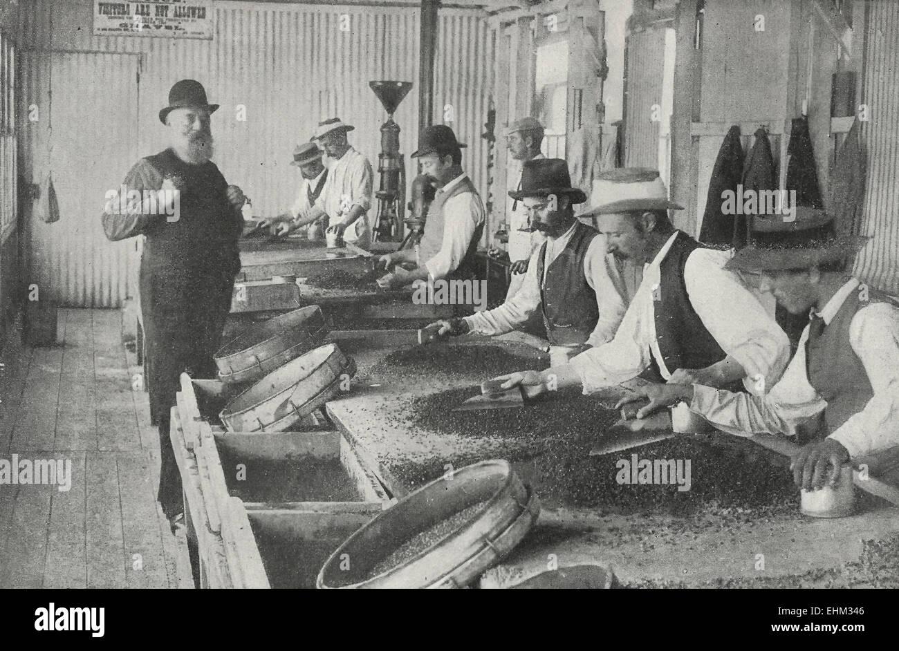 Sifting the Gravel for Diamonds - Kimberly Mines, South Africa, circa 1898 Stock Photo
