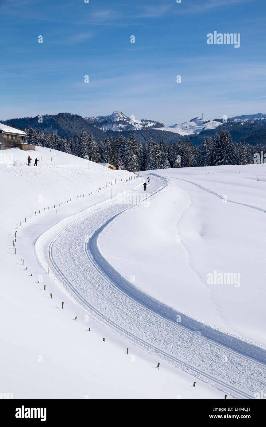 Cross-country ski run, Winklmoosalm alp, Reit im Winkl, Chiemgau Alps, Upper Bavaria, Bavaria, Germany - Stock Image