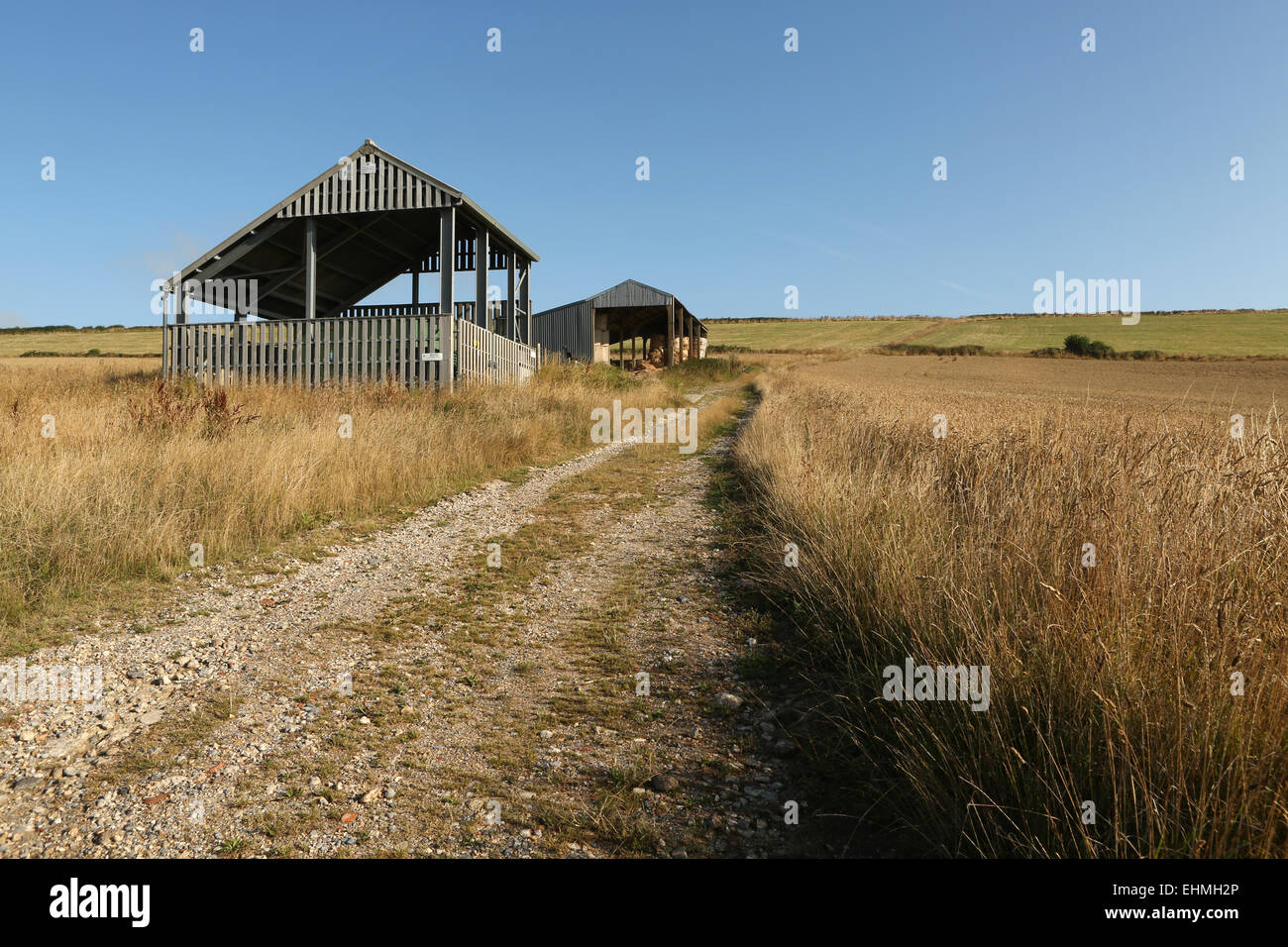 Agricultural building in a remote rural location - Stock Image